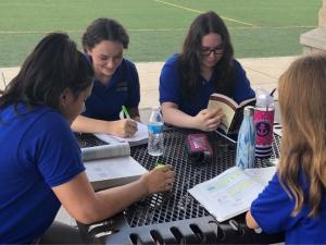 Cortona Students Study Session